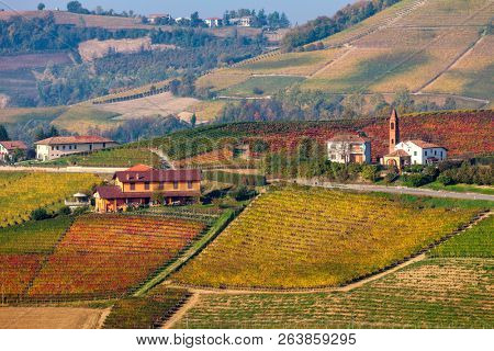 Rural houses among colorful autumnal hills and vineyards in Piedmont, Northern Italy.