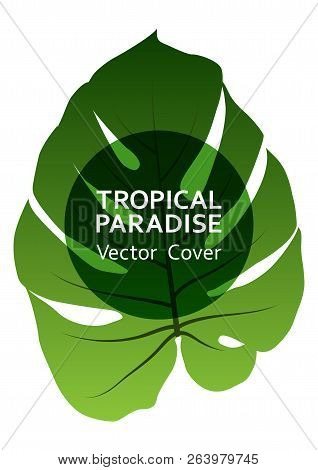 Tropical Paradise Leaf Vector Cover Layout. Fashionable Floral A4 Design. Exotic Tropic Plant Leaf V
