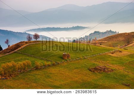 Carpathian Rural Area In Autumn At Dawn. Leafless Trees By The Road. Haystacks On The Grassy Meadow.