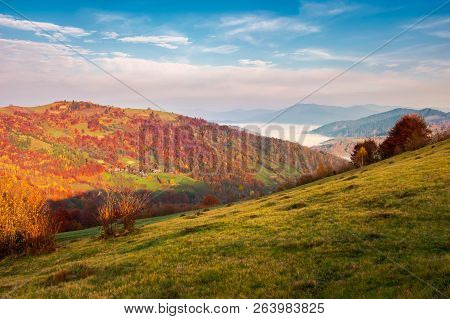 Beautiful Landscape In Mountains. Pleasant Autumn Weather At Sunrise. Forest In Reddish Foliage. Fog