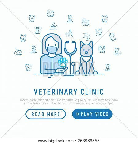 Veterinary Clinic Concept. Thin Line Icons: Injection, Cardiology, Cleaning Of Ears, Teeth, Shearing