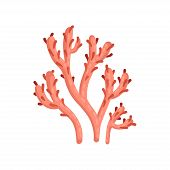 Flat vector icon of bright red soft coral. Plant of tropical waters. Marine ecosystem. Sea and ocean life poster