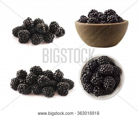 Blackberries Isolated On White Background. Blackberries With Copy Space For Text. Set Of Blackberrie