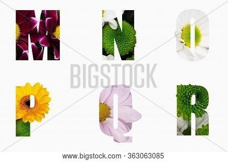 Flower Font Alphabet M,n,o,p,q,r Made Of Real Aliverose Rose Flower Cut Shape Of Letter. Collection