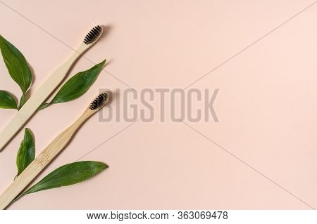 Flat Lay Of Two Recycled Bamboo Toothbrush Lying Near Leaves Isolated On Pastel Pink Background With