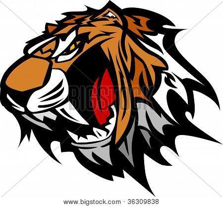 Tigre mascota Vector ilustración gráfica