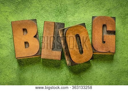 blog word in vintage letterpress wood type against green textured, handmade,  bark paper - blogging, internet communication and social media concept