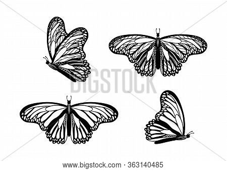 Hand Drawn Butterflies Black Silhouettes Set Isolated On White Background. Coloring Book