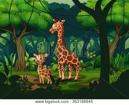 A Giraffe With Her Cub In A Tropical Forest