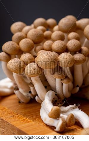 Fresh Uncooked Buna Brown Shimeji Edible Mushrooms From Asia, Rich In Umami Tasting Compounds Such A