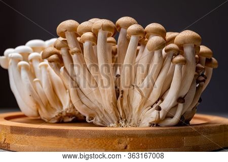 Fresh Uncooked Buna Brown And Bunapi White Shimeji Edible Mushrooms From Asia, Rich In Umami Tasting