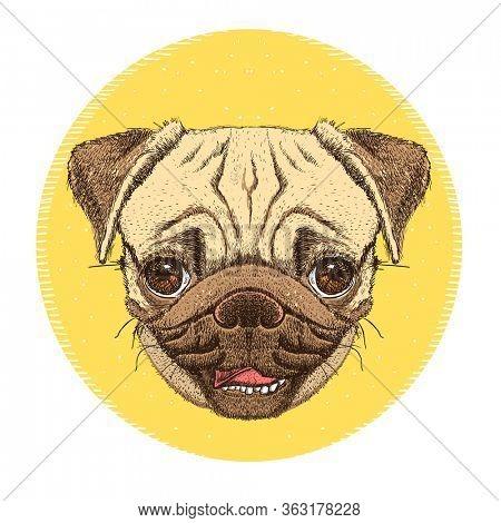Pug dog portrait emblem, hand drawn illustration with cute pug dog face, rasterized version