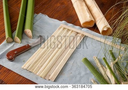 The Making Of Papyrus Paper