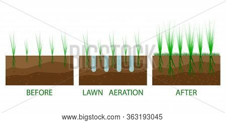 Lawn Aeration Process Steps - Before And After. Lawn Aeration. Gardening Grass Lawncare, Landscaping