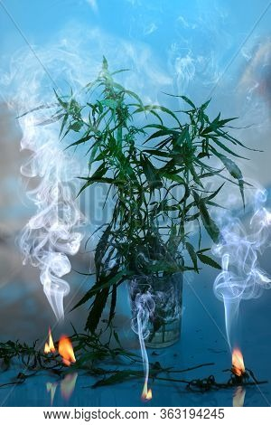 A Bouquet Of Cannabis Ruderalis Plants In A Glass With Three Burning Smoking Fire On A Blue Backgrou