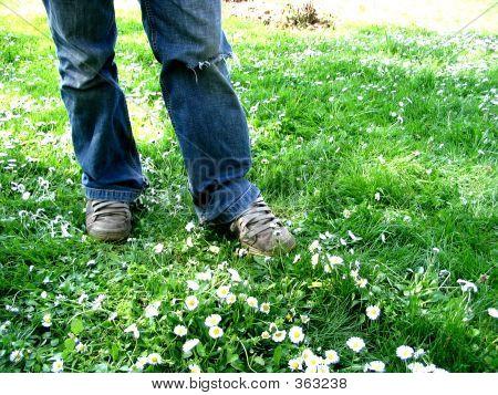 Grundge Grass
