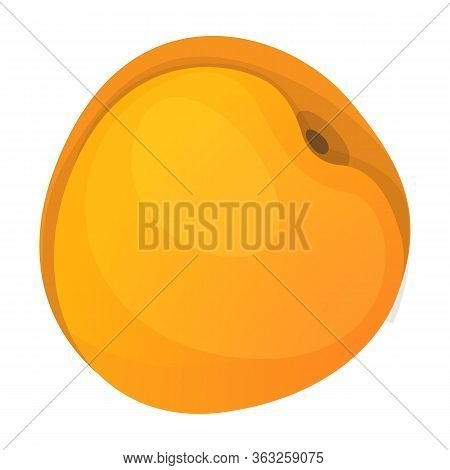 Apricot Vector Icon.cartoon Vector Icon Isolated On White Background Apricot.