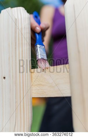 Closeup Of Female Hand Applying Transparent Protective Varnish On Wooden Fence In Back Yard.