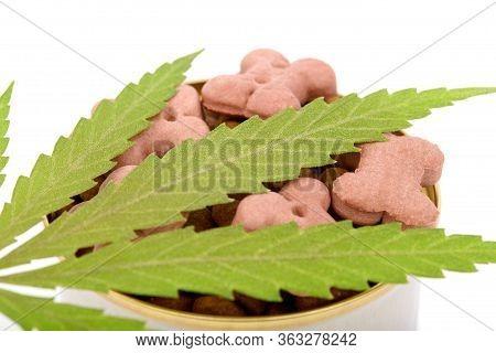 Concept Of Animal Feed, Vitamins With Cbd Oil And Cannabis. Cannabidiol With The Pet. Cannabinoid Cb