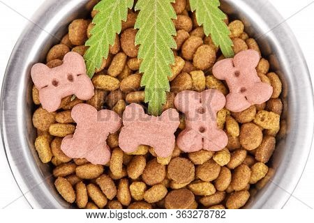 Concept Food Cbd Pet, Vitamins With Cbd Oil And Cannabis Of Animal Feed. Cannabidiol Oil Is Used As
