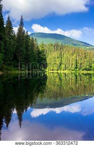 Lake Summer Landscape. Beautiful Scenery Among The Forest In Mountains