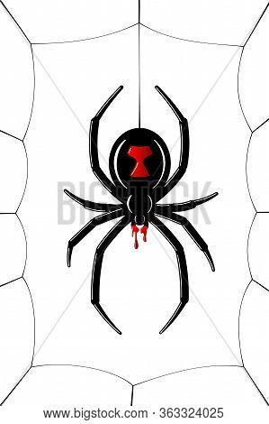 Spider Black Widow, Cobweb. Red Black Spider 3d, Spiderweb, Isolated White Background. Scary Hallowe