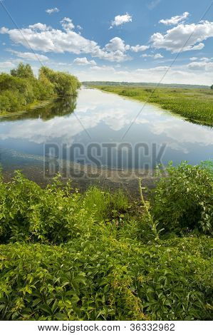 Houghton Lake Flats Marsh, Michigan, Usa