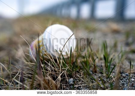 Plastic Waste On The Side Of The Road In The Grass. Used Coffee Cup. Pollution Problem. Close Up Dis