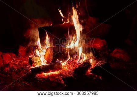 Closeup Camp Fire At The Night. Night Photo