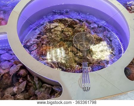 Iron Sieve And Seashells In Water For Cooking In Restaurants