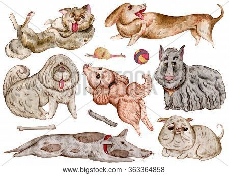 Watercolor Dogs And Design Elements Collection. Cute Funny Characters, Dog Emotion And Feelings. Iso