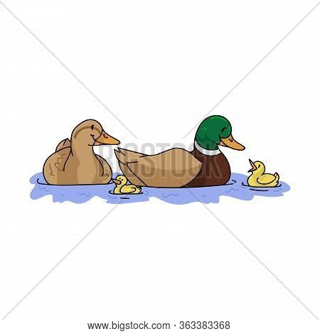 Cute Cartoon Duck Family With Duckling On Pond Vector Clipart. Wildlife Animal Waterfowl For Nature
