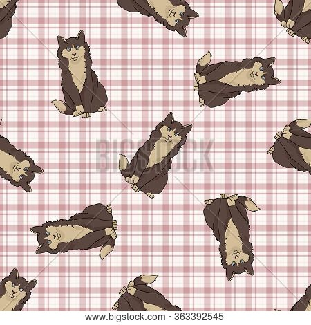 Cute Cartoon Maine Coon Cat Seamless Vector Pattern. Pedigree Kitty Breed Domestic Kitty Background.