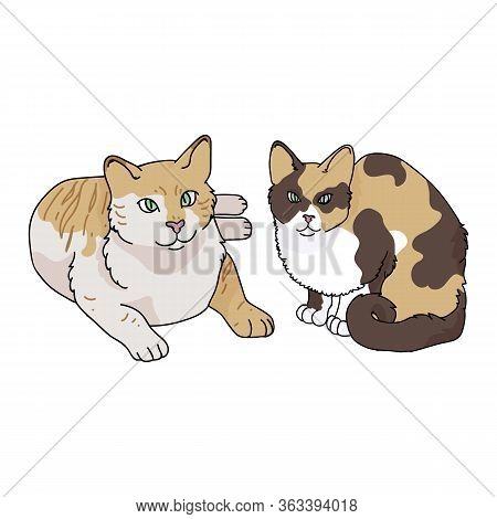 Cute Cartoon Tabby And Calico Cat Vector Clipart. Pedigree Kitty Breed For Cat Lovers. Purebred Dome