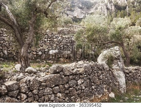 The Art Of Building Walls In Dry Stone, Traditional In Rural Areas Of Croatia, Cyprus, France, Greec