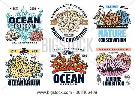 Oceanarium, Undersea Aquarium And Tropical Fishes Exhibition, Vector Icons. Ocean Underwater World A