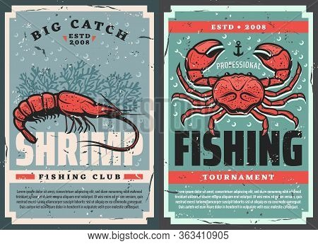 Seafood Fishing Club And Fisher Tournament, Vector Retro Vintage Posters. Professional Fisherman Lur