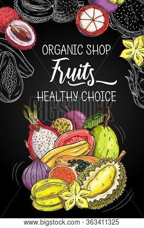 Tropical Fruits Farm Market And Orgnaic Food Shop, Vector Poster. Natural Healthy Exotic Durian, Fig