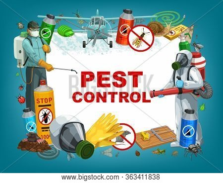 Pest Control Service Vector Poster, Disinfestation And Deratization Sanitary. Domestic Insects Ticks