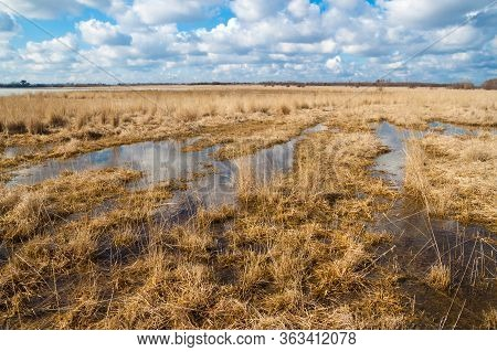 Landscape Flooded Meadows In Early Spring. White Clouds Reflected In Puddles Of Water. Beautiful Ste
