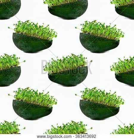 Fresh Green Water Cress In Half Of Avocado On White Background. Seamless Pattern. Isolated. Creative
