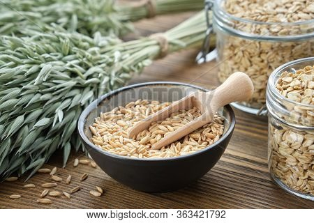 Bowl Of Oat Grains, Jars Of Oat Flakes And Green Oat Ears On Wooden Kitchen Table.