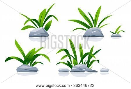 Set Of Different Stones With Green Grass In Landscape Design, Detailed Green Plants On Ground Isolat