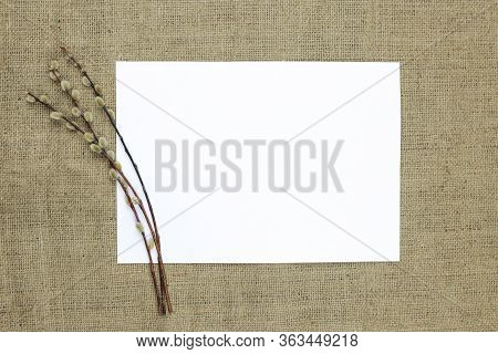 Willow Branches With Catkins On A Background Of Burlap And Space For Text. Concept: Holiday Card Moc