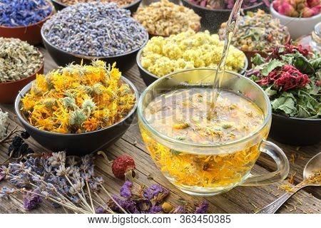 Cup Of Healthy Marigold Tea And Calendula Flowers. Healthy Calendula Tea Poured Into Glass Cup. Medi