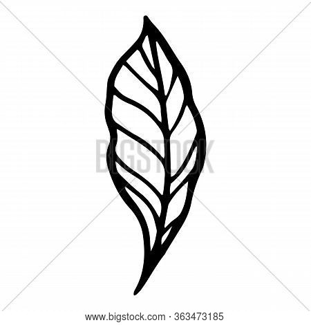 Ink Peony Leaf Icon. Hand Drawn Illustration Of Ink Peony Leaf Vector Icon For Web Design
