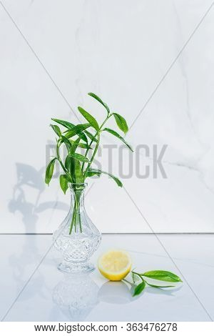 Transparent Crystal Vase With Fresh Greenery And Half Of Lemon And Glance Green Leaves On Marble Bac