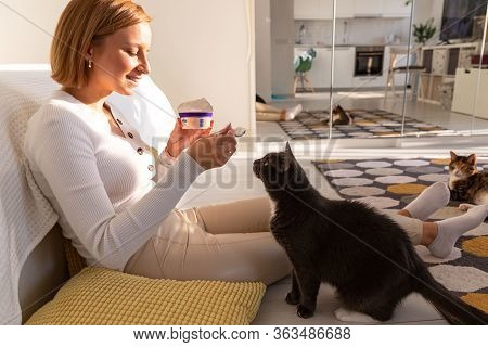 Fluffy Black Cat Begs For Food From Her Owner Eating Yogurt, Watches Her Every Action, Sitting On Th