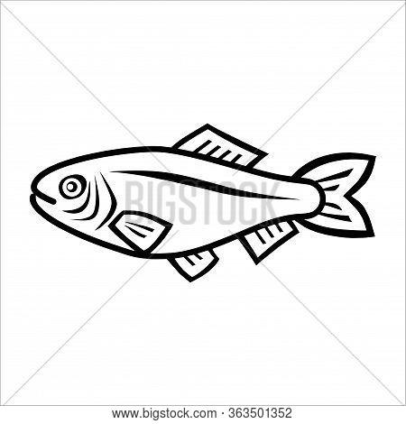 Ikan.eps