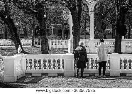 Two Women Have Stopped To Look At The Birds In The Artificial Lake At The Kadriorg Park In Tallinn,